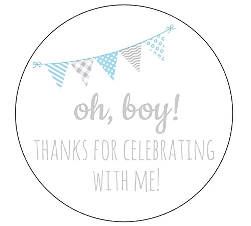 Seal Pennant - Pennant Oh Boy Stickers - Set of 12
