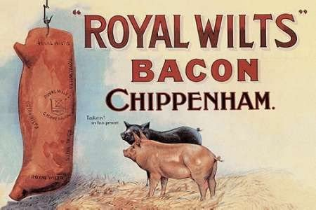 Pigs And Pork Royal Wilts Bacon Poster Print By Advertisement 12 X 18 Posters Prints