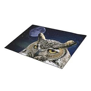 Ggtemal Decorative Door Mats Tiger Owl Forest Animals Owl