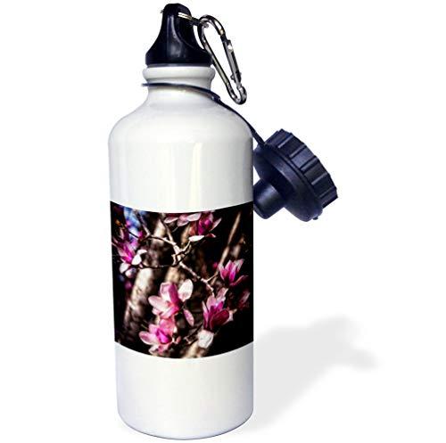 Magnolia Budding - 3dRose Boehm Photography Flower - Budding Magnolia Flowers - 21 oz Sports Water Bottle (wb_127509_1)