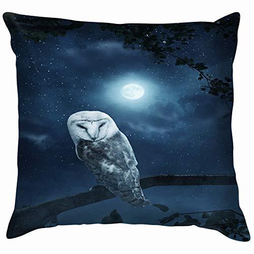 Awakening Owl Sitting On Tree Illuminated Animals Wildlife Pillow Case Throw Pillow Cover Square Cushion Cover 12X12 Inch