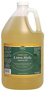 Lawn Mole Castor Oil, MolEvict, Gallon