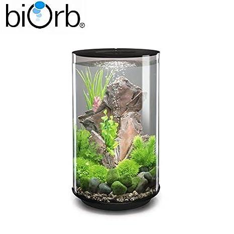 BiOrb Tube 30L Acuario en Negro - MCR LED Iluminación - Incluye todos los accesorios de adorno que se muestran en la imagen!: Amazon.es: Productos para ...