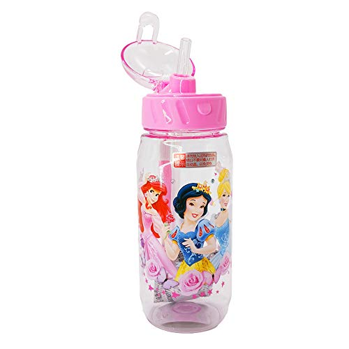 Runninglion Kids Water Bottle with Straw 15.5 oz Leak Proof BPA Free Sophia Princess Cup for School Children Student Birthday ()