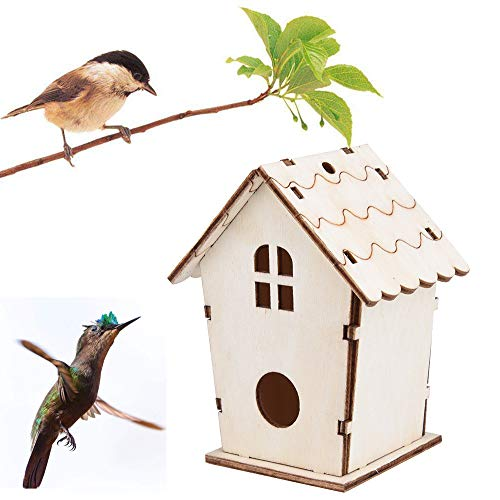 Miniature Natural Bird - Buolo-Ship from USA Outdoor Wooden Bird Houses Unfinished Birdhouse Creative DIY Crafts Ready to Paint or Decorate Eco-Friendly Shelter (Brown)