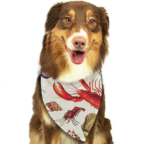 FRTSFLEE Dog Bandana Lobster and Shell Scarves Accessories