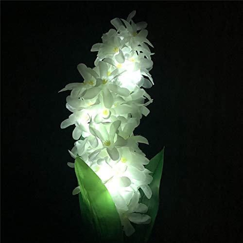Hyacinth Outdoor Lights in US - 7