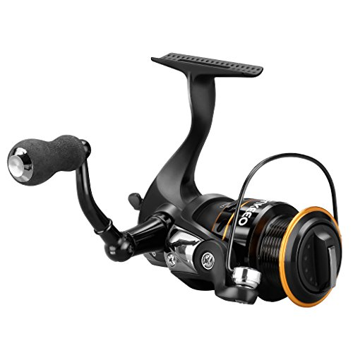 ENKEEO Spinning Fishing Reel 10+1 BBs Lightweight Ultra Smooth with Left/Right Interchangeable Handle, 20LB Super Drag, Anti-reverse for Freshwater Saltwater Fishing 2000 3000 4000 Series