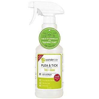 Home Flea Spray Image