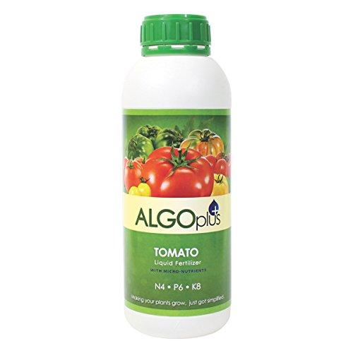 AlgoPlus Tomato - Liquid Fertilizer & Plant Food 1-Liter Bottle - Liquid Tomato