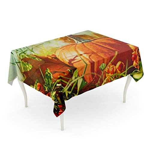 Tarolo Rectangle Tablecloth 60 x 102 Inch Orange Fall Small Pumpkin in The Grass Vintage Color Feeling Scene Halloween Harvest Leaves Table Cloth -