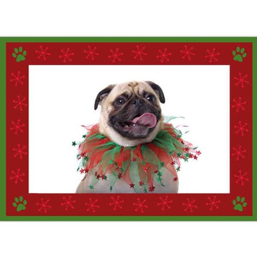 Birchcraft Studios 2228 Puppy Paw Prints Photo Card in Red - Gold Lined Envelope with White Lining - Red Ink - Pack of 25