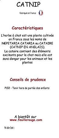 Feuille rouge - Hierba gatera en spray, 125 ml de Nepeta cataria: Amazon.es: Productos para mascotas