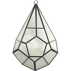 Rustic Geometric Glass Terrarium - Indoor / Outdoor Industrial Finish (Glass, 10 Inch Tear Drop)
