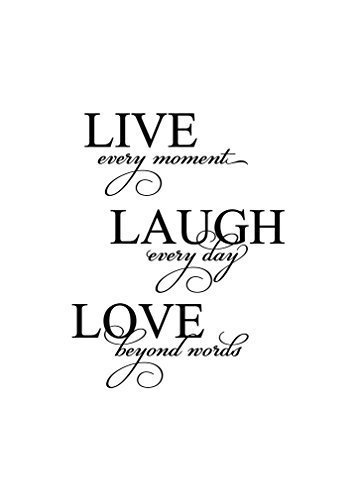 LIVE EVERY MOMENT LAUGH EVERY DAY LOVE BEYOND WORDS Novelty Aluminum Metal Sign 12X16 Inches