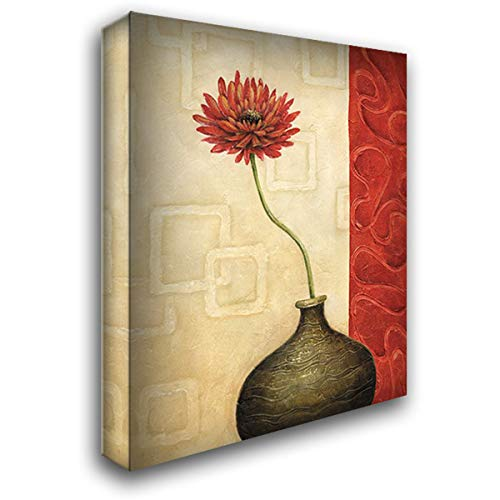 Rouge IV 28x36 Gallery Wrapped Stretched Canvas Art by Corbin, Delphine