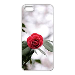 Unique design fashion MobileCareshell lovely phone case for iPhone 5s