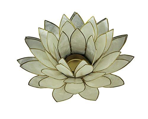 (Things2Die4 White Capiz Shell Lotus Flower Tealight Candle Holder)