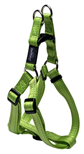 ROGZ Reflective Adjustable Dog Step in Harness for Extra Large Dogs; Matching Collar and Leash Available, Green
