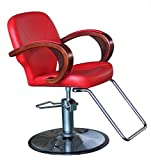 shengyu Hydraulic Styling Barber Chair Hair Beauty Salon Equipment (Red)