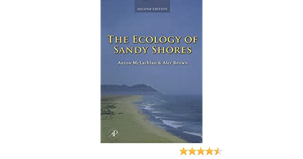The Ecology of Sandy Shores