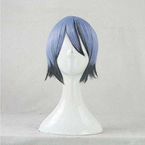 Akuma Costume Wig (Akuma no Riddle Azuma Tokaku Blue Gradien Cosplay Costume Wig + Free Wig Cap)