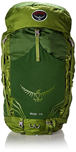 Osprey Youth Ace 75 Backpack, Ivy Green, One - Frame Ace