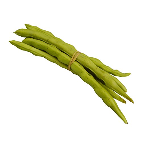 Transcend11 Simulated Green Beans Artificial Lifelike Fake Vegetable Home Party Market Display Kids Toy Kitchen Decoration Photography ()