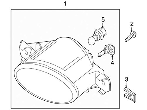 Amazon Com Genuine Nissan Parts 26261 8998d Led Bulb Automotive