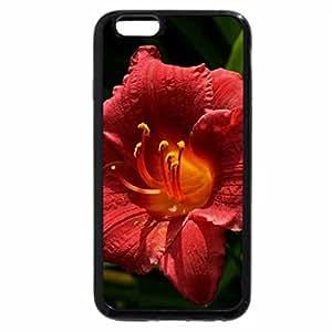 iPhone 6S / iPhone 6 Case (Black) Hibiscuus