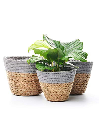 Pot Grass - Set of 3 Woven Planter Basket Flower Pot Grass Fake Flower Vase Decorative Indoor Planter Cover Rustic Home Decor Succulent (3, Grey)
