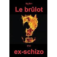 Le brulot d'un ex-schizo (French Edition)