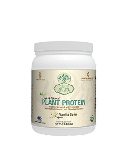 Perfectly Natural Organic Plant Protein - 1lb - Vanilla