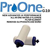 "ProPur ProOne G 2.0 5"" Filter Elements (1 PAIR) for ProPur Traveler or Nomad - New ProOne Filter Elements Chemical and Fluoride Removal"