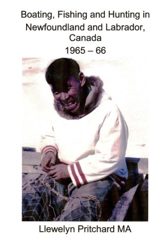 Canadian Seal Hunt Animal - 3