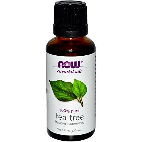 733739076250 - Now Foods Tea Tree Oil, 1 oz (Pack of 2) carousel main 1