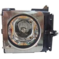 Electrified POA-LMP121 / 610-337-9937 Replacement Lamp with Housing for Sanyo Projectors