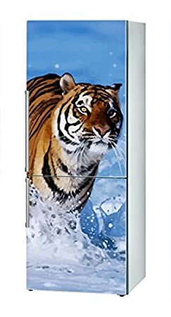 Decusto - Tiger - Adhesivo para Decorar Tu Nevera: Amazon.es ...
