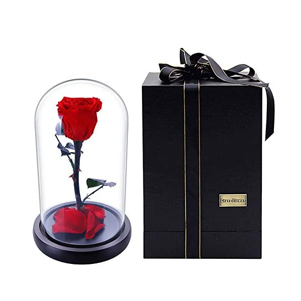 Preserved Fresh Rose Flower with Box 100% Real Rose Enchanted Rose Gift Ideas for Valentine's Day, Anniversary, Birthday