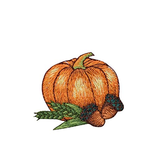 Pumpkin with Acorns Iron on Embroidered - Applique Acorn