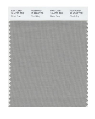 Pantone 16-4703 TCX Smart Color Swatch Card, Ghost Gray by Pantone (Gray Swatches)