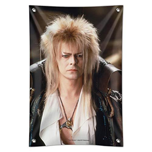 "GRAPHICS & MORE Labyrinth Goblin King David Bowie Portrait Home Business Office Sign - Vinyl Banner - 22"" x 33"" (56cm x 84cm)"