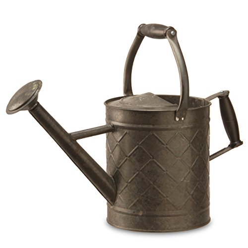 National Tree Co. Metal Watering Can