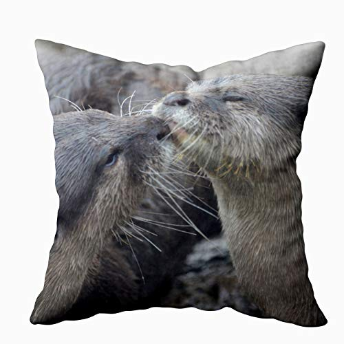 EMMTEEY Home Decor Throw Pillowcase for Sofa Cushion Cover, Kissing River Otters Decorative Decorative Square Accent Zippered and Double Sided Printing Pillow Case Covers 20X20Inch