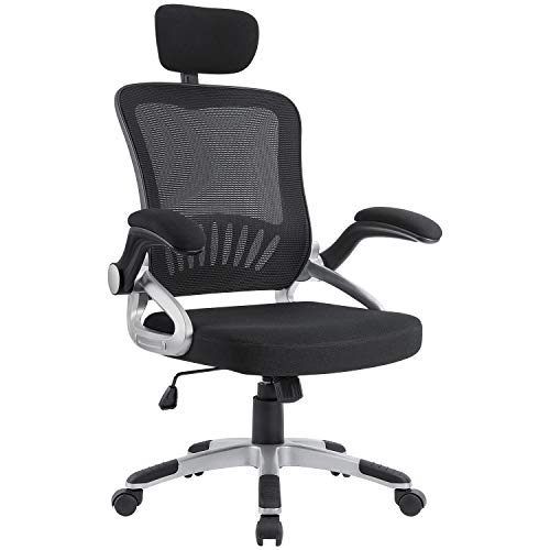 Homall Mesh Office Chair High Back Computer Desk Task Chair, Ergonomic Executive Swivel Chair with Adjustable Headrest and Padded Flip-up Armrests