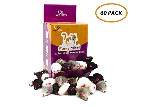 AXEL PETS 60 Furry Mice with Catnip and Rattle Sound Made of Real Rabbit Fur Interactive Catch Play Mouse Toy for Cat…
