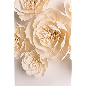 KEY SPRING Paper Flower Decorations, Large Crepe Paper Flowers, Handcrafted Flowers, Giant Paper Flowers (Beige, Set of 6) for Wedding Backdrop, Nursery Wall Decorations, Bridal Shower, Baby Shower 2