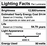 EverWatt 250W Metal-Halide Equivalent