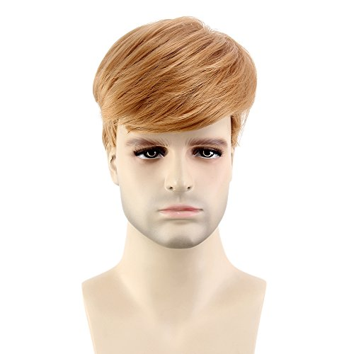 Stfantasy Men's Wigs Cosplay Costume Pixie Short Straight Fluffy Layered Synthetic Party Male Hair+Cap (12