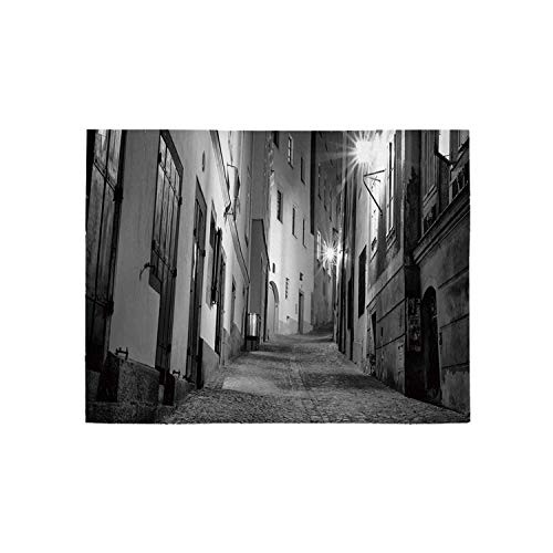 (Black and White Decorations Utility Area Rug,Dark European Alleyway at Night Empty Street with Cobblestones Decorative for Home,31